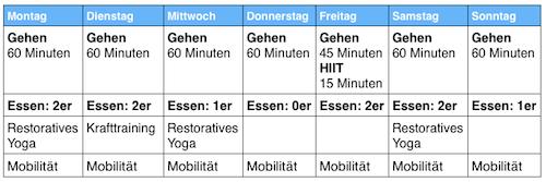 fitnessplan